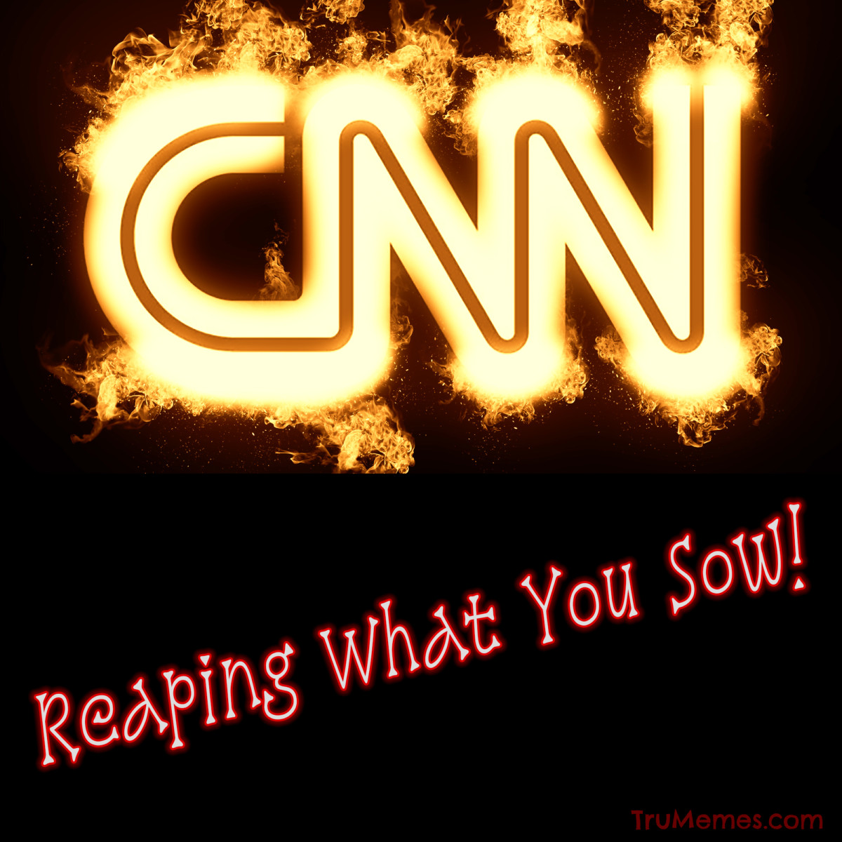 CNN On Fire Reaping What You Sow-2
